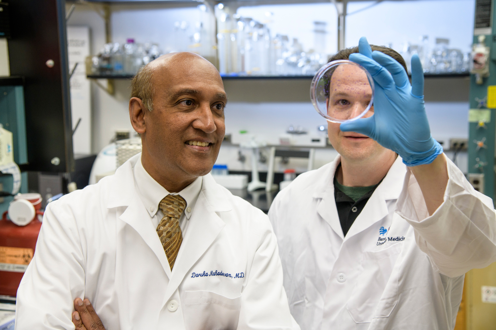 Daruka Mahadevan, MD, PhD, and Eric Weterings, PhD,  examine a petri dish in a UA Cancer Center laboratory (Kris Hanning, UAHS BioCommunications)